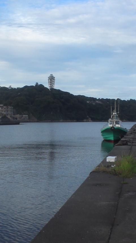 今日は急遽釣りです(^_^;)