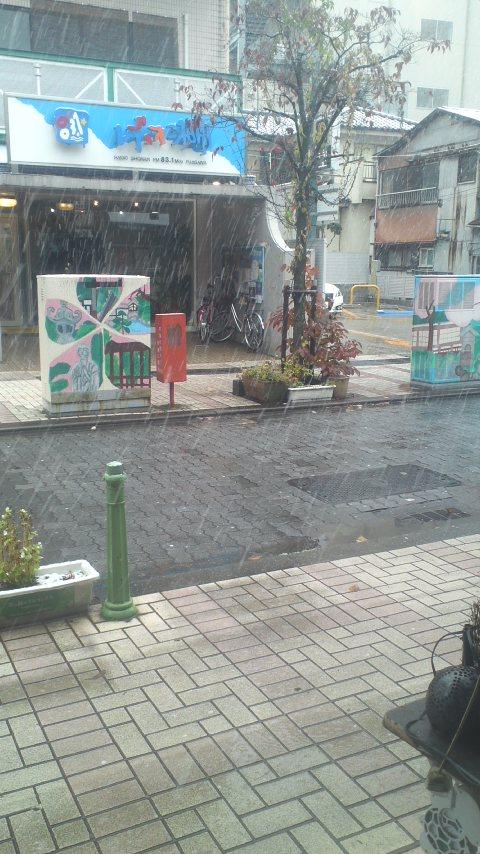 54年ぶりの雪f^_^;