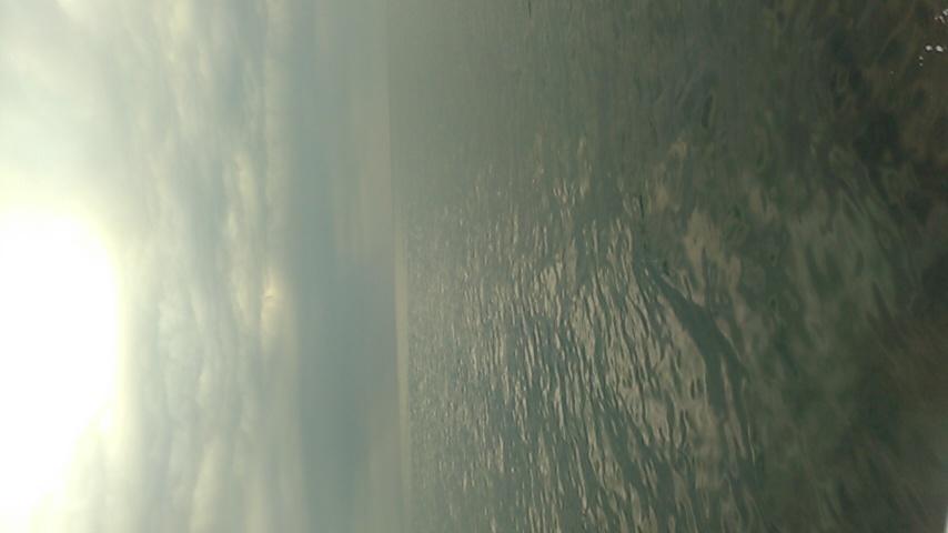 今日は江ノ島沖です!