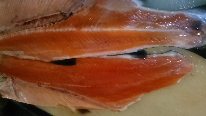 ますだけど相模湾の魚(^O^)