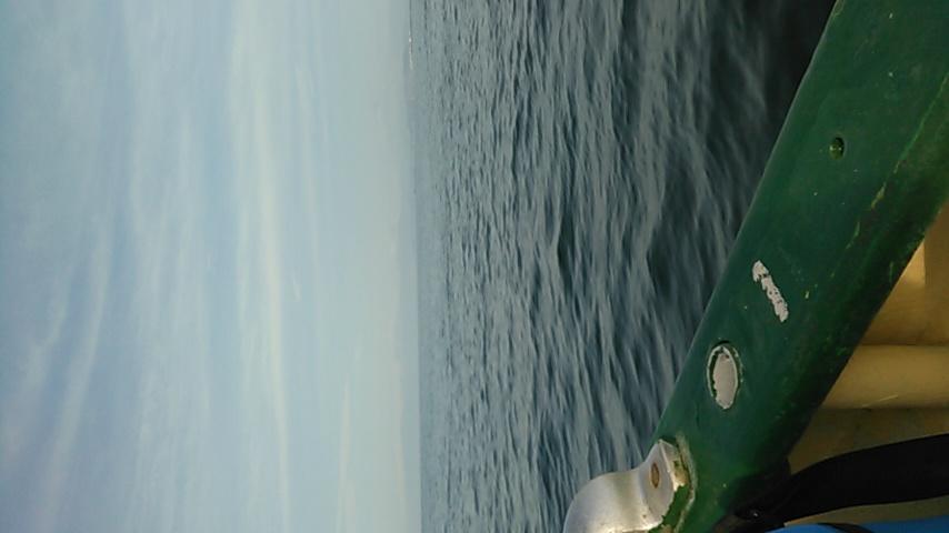 今日は鎌倉沖です!